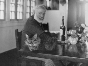 Hemingway-writing-plans